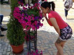 Escorte din Bucuresti: Buna sunt noua in orasul tau nu ezita sa ma contactezi